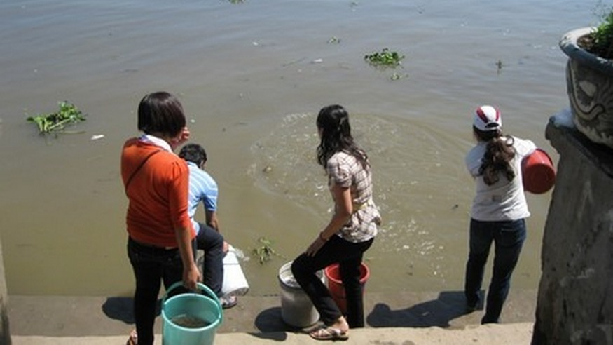 [hoạt động] Lễ phóng sanh tại chùa Diệu Pháp ngày 30/10/2011